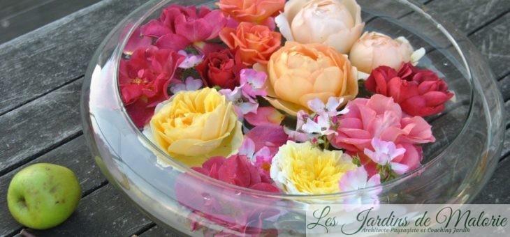 Coupelle de roses d'automne