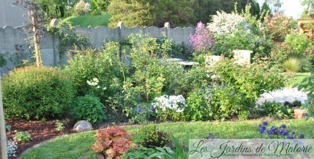 Chroniques de mon jardin : Des fleurs d'avril…