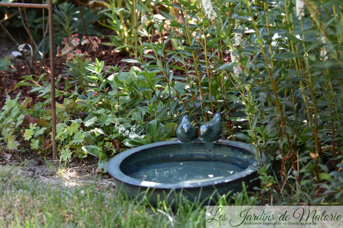 une coupelle d'eau fraîche pour les hérissons... et autres petites bêtes du jardin