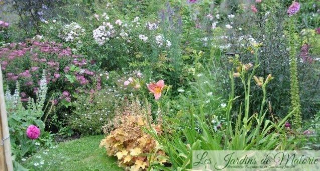 Chroniques de mon jardin : Le massif de Gédéon