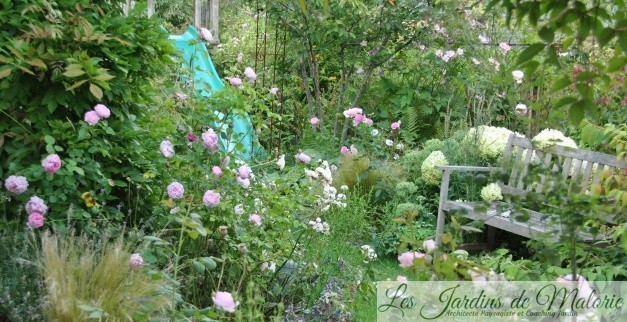 Chroniques de mon jardin : Sous le soleil exactement