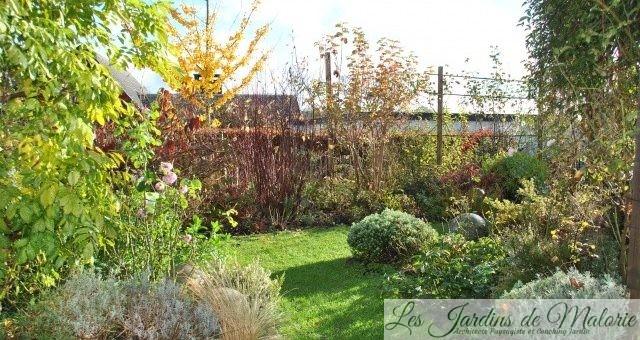 Chroniques de mon jardin: vue sur le jardin