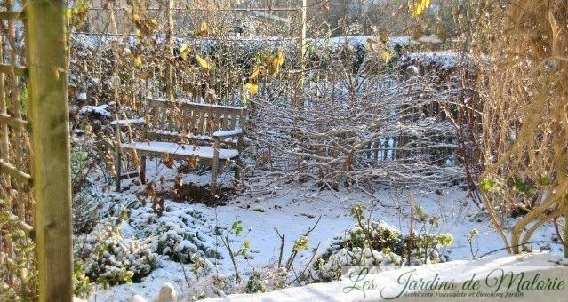 Chroniques de mon jardin : Neige blanche…