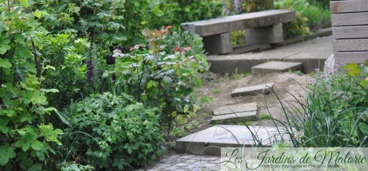 Chroniques de mon jardin : Une «verrue» au jardin