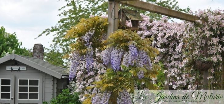 Les parfums de mon jardin en mai