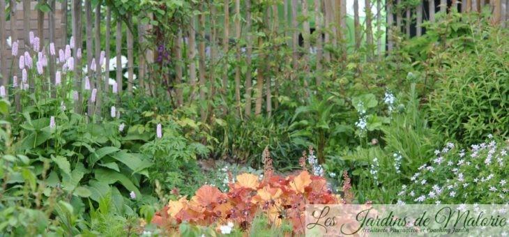 Chroniques de mon jardin: Beautés de mai…