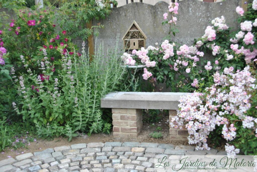 nepeta 'Dawn to Dusk', rosiers 'Ann Endt' et 'Belle de Sardaigne' et 'Tapis volant' autour du banc de la terrasse ronde