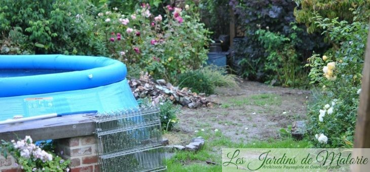 Chroniques de mon jardin : rien ne va plus!