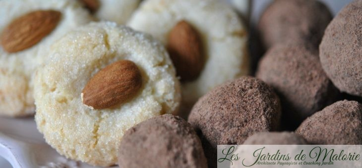Gourmandises : Biscuits aux amandes