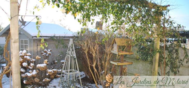 Chroniques de mon jardin : Le jardin en hiver