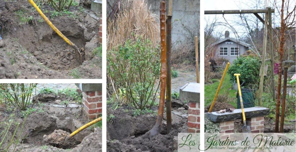 j 39 ai plant un arbre dans mon petit jardin les jardins de malorie. Black Bedroom Furniture Sets. Home Design Ideas