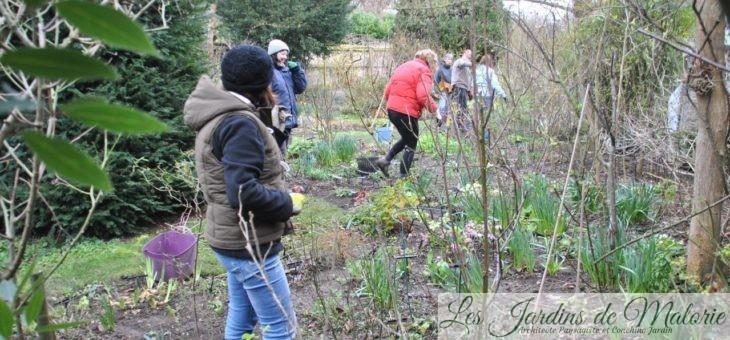 Nettoyage de printemps au jardin d'André Eve
