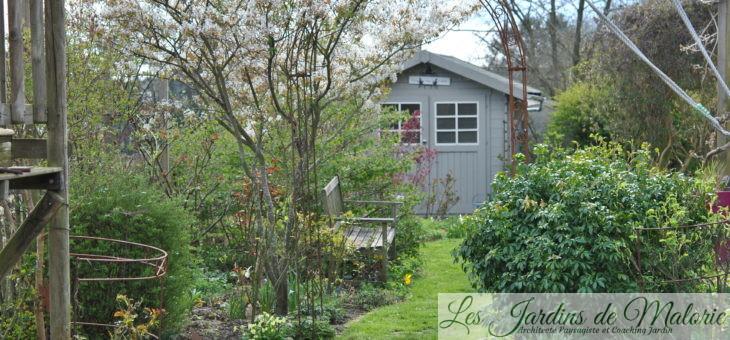 Chroniques de mon jardin: Premiers jours d'avril…