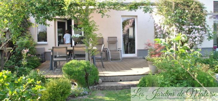 Chroniques de mon jardin: Autour de la terrasse…