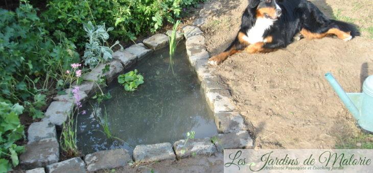 Point d'eau 2: Les pieds dans l'eau