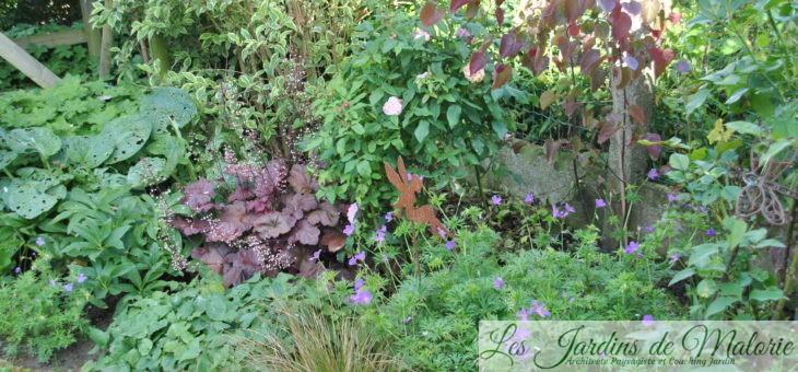 Chroniques de mon jardin: Le massif du toboggan