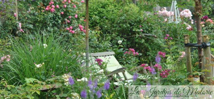 Chroniques de mon jardin : Jardin d'été…