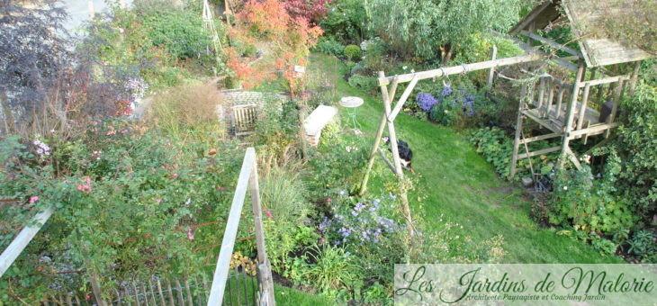 Chroniques de mon jardin: vu d'en haut