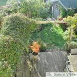 Chroniques de mon jardin : vu d'en haut 2