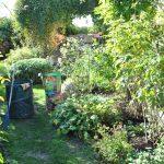 Soins aux rosiers : Pour des rosiers en bonne santé et une plus belle floraison