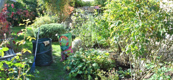 Travaux d'automne au jardin : un nettoyage succinct