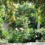 Chroniques de mon jardin: émerveillement (2)