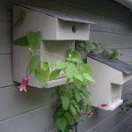 Construire un nichoir à balcon pour mésanges