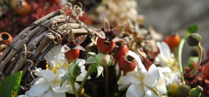 💐 Bouquets de roses du jardin