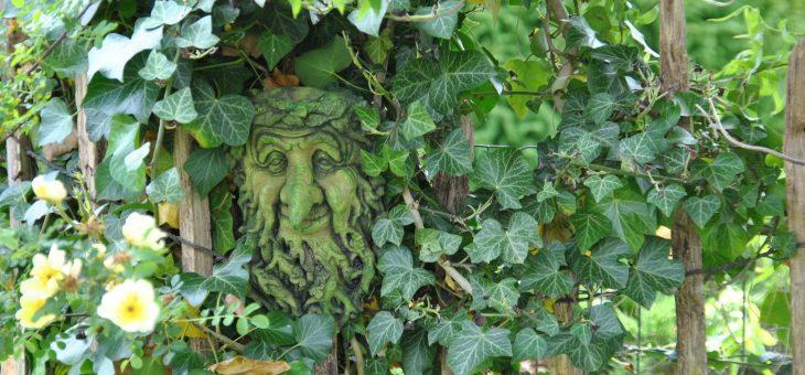 Green man, l'esprit de l'arbre