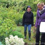 Charette chez André Eve: répertorier les rosiers