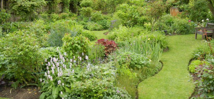 Visite de jardin: le jardin d'André Eve, au printemps (mai 2013)