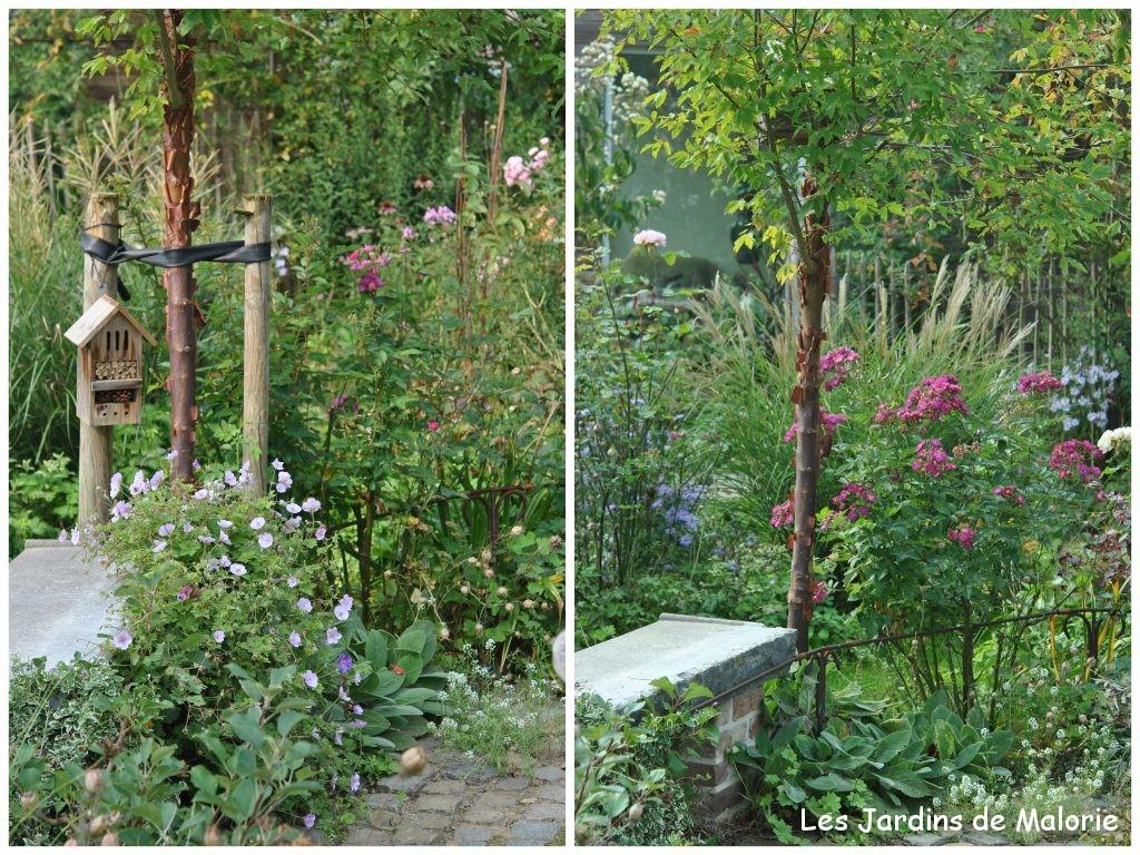 faut il tuteurer un arbre les jardins de malorie. Black Bedroom Furniture Sets. Home Design Ideas