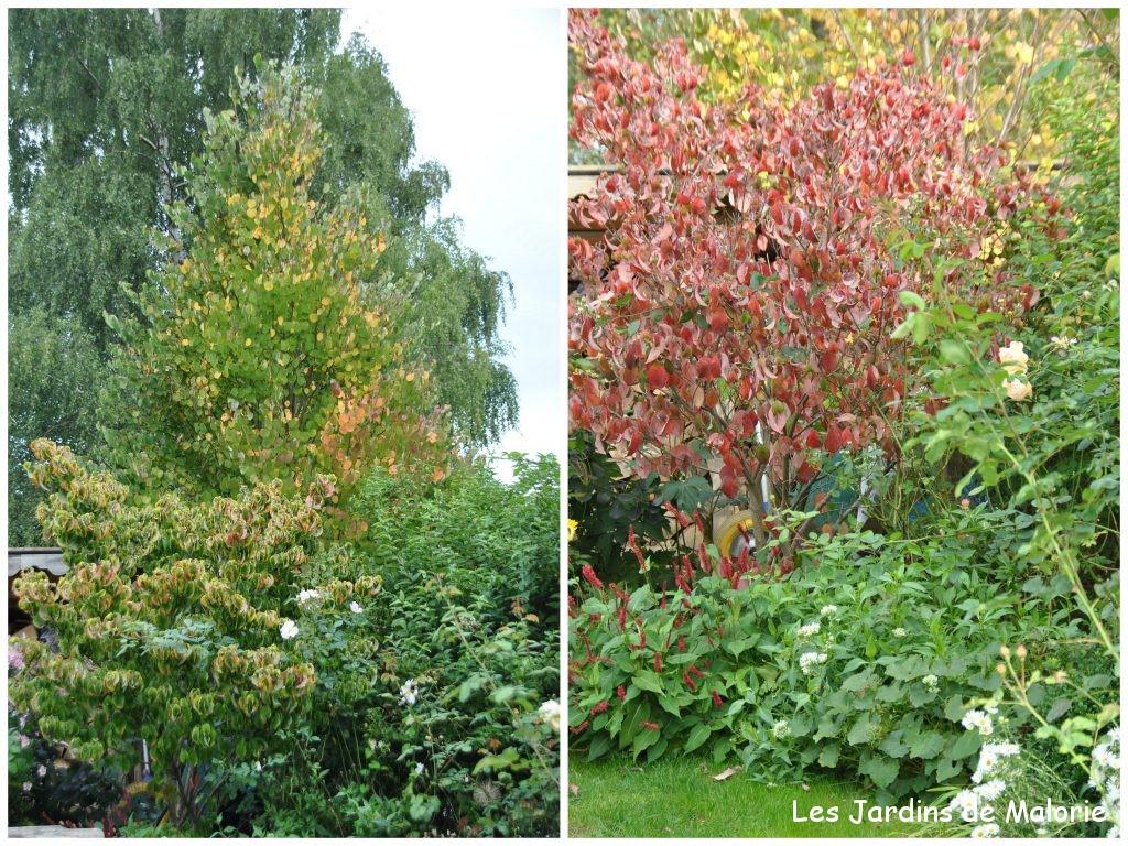 Le jardin en septembre sduisant jardin en septembre - Que faire au jardin en septembre et octobre ...