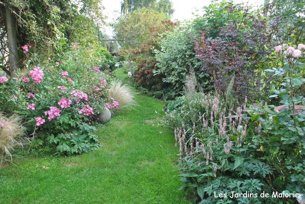 Le jardin en septembre sduisant jardin en septembre concernant quelles fleurs planter en - Que planter en septembre fleurs ...