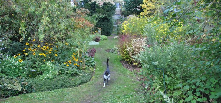 Charrette de septembre au jardin d'André Eve