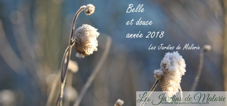 Meilleurs voeux pour 2018!
