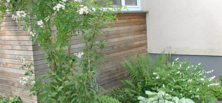 Que planter dans un parterre contre la facade au nord