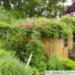 Végétaliser le toit d'une cabane de jardin