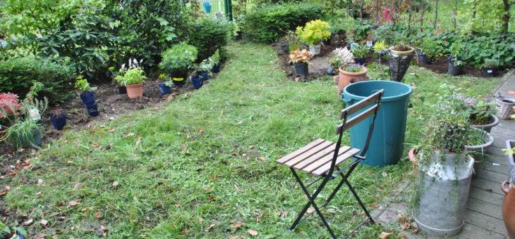 Coaching-jardin chez Jackie: un petit jardin de ville, sans soleil.