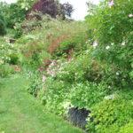 Visite de jardin: Le jardin personnel d'André Eve