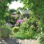 Chroniques de mon jardin : Sécheresse et canicule