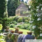"""""""La Bonne Maison"""", le remarquable jardin de roses d'Odile Masquelier"""