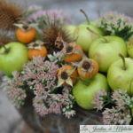 Petites pommes en bouquet d'automne