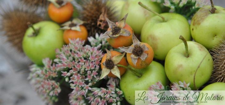 💐 Petites pommes en bouquet d'automne