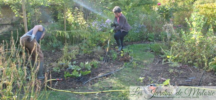 Au jardin personnel d'André Eve, l'élargissement des allées engazonnées…