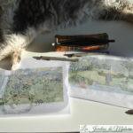 Projet d'aménagement: Le jardin de Mélanie et Thierry