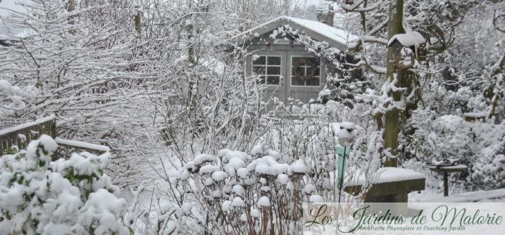 Chroniques de mon jardin: Chouette, il neige!