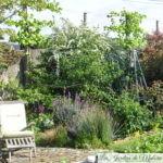 Le bout du monde et le fond du jardin contiennent la même quantité de merveilles...