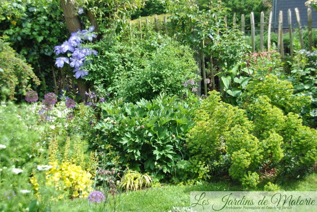 Le tour de mon jardin (2) : le fond du jardin - Les Jardins ...
