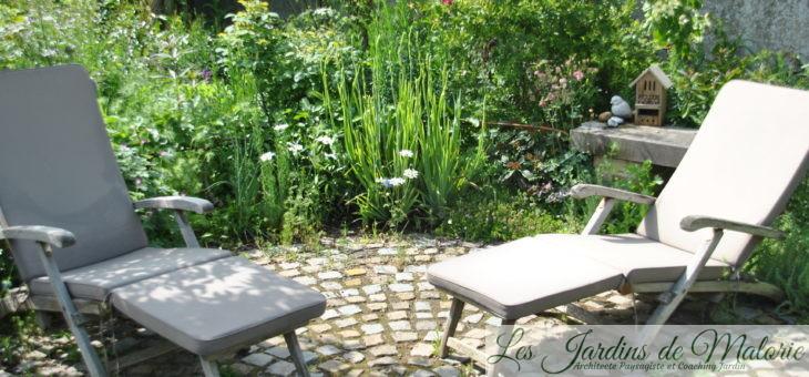 Le tour de mon jardin (2) : le fond du jardin